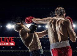 Mejores Páginas para ver Boxeo ONLINE en Directo